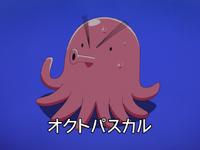 Octopascal