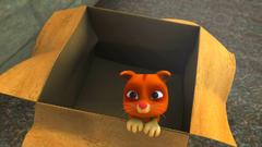 Kucing Jingga