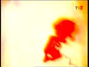 Vlcsnap-2012-11-13-17h15m15s118