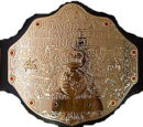 World Heavyweight Championship (WWE SmackDown! vs RAW 2006)