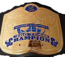 WWE Tag Team Championship (WWE SmackDown! vs RAW 2006)