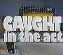 Caught in the Act (1979)