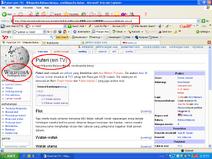 Wikipedia suck!