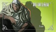 Scar 4235
