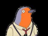 The Paparazzi Birds