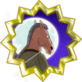 This Is BoJack... Horseman, Obviously