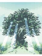 Healed Tree