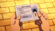Provisional Hero License