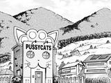 Pussycats Agency