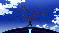 Enramada (anime)
