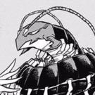 Centipeder Portrait