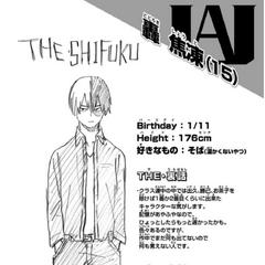 Perfil de Shoto Todoroki.