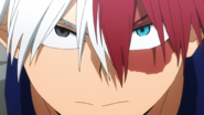 Shoto Todoroki's self reflection
