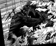 Dark Shadow vs. Re-Destro
