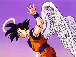 Goku Angel