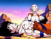 Goku, Krilin i Gohan després de la batalla
