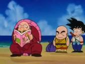 Roshi llegint revistes