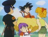 Akane, Taro, Arale i Goku