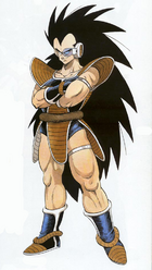 Colors Originals Raditz