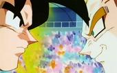 Goku i Majin Vegeta
