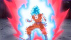 Goku SGDSG Atac Kaito