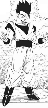 Gohan místic manga