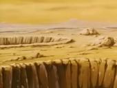 Desert Litt