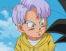 Trunks slider BDS