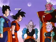 Vell Kaioshin, Kibito, Kaioshin, Goku i Gohan