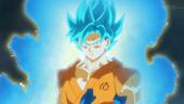 Goku SGDSG BDS