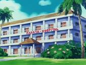 Hospital de Papaya