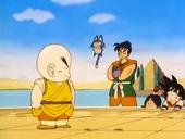 Krilin, Goku, Yamcha i Puar a Palau Baba