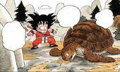 Goku troba Tortuga