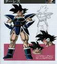 Concepte Turles