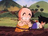 Krilin i Goku treballant terra