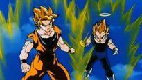 Goku i Vegeta SG