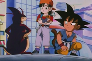 Rage, Goku i Pan