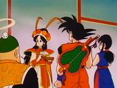 Goku, Annin, Gohan i Xixi
