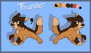 Thunder revamp