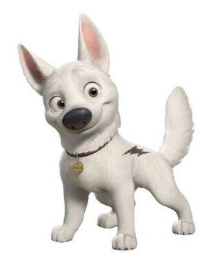 Bolt-superdog