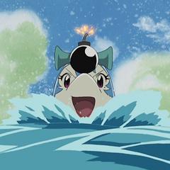 Dolphin Bomber's Sonic Bomb