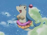 Dolphin Bomber2