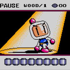Pause Screen