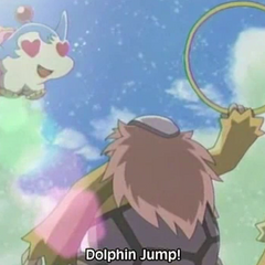 Dolphin Bomber jumps into the hoop