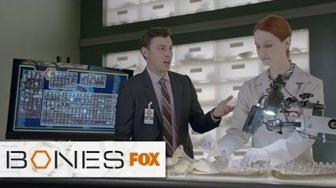 Sweets Takes on More Responsibility BONES FOX BROADCASTING