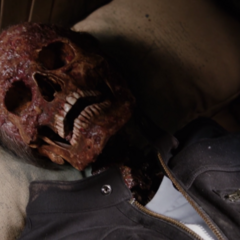 A close-up look at The Apprentice's Skull.