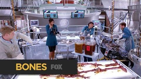 Flesh & Bones Happy Halloween 2014 BONES FOX BROADCASTING