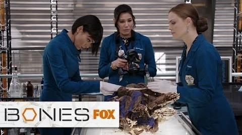 "Business As Usual For Brennan from ""The Ghost In The Killer"" BONES FOX BROADCASTING"