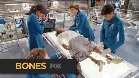 BONES An Intense FOX Thursday FOX BROADCASTING