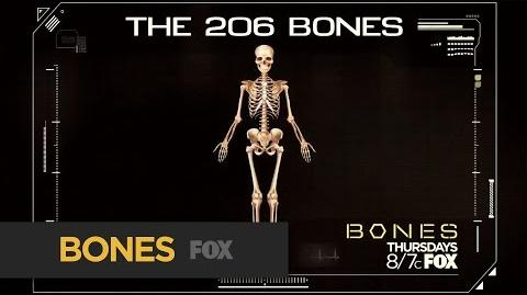BONES The 206 Bones Loop FOX BROADCASTING
